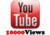 provide 10000 youtube views, real, safe,100% satisfactory