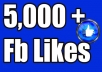 provide 5000 facebook post likes, instant and permanent