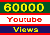 Add 60,000+ High Quality Youtube Views Fully safe Instant start