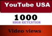 provide 1000USA youtube views, real, instant