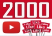 provide 2000 youtube views, superfast.