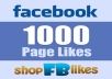 provide 1000 Facebook Fan Page likes, organic, permanent