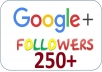 **TOP Google plus Service Provider ** 