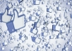 provide you 3000+ Facebook page likes