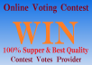 promote 100 real votes on your online contest voting