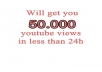 +50K youtube views to your video