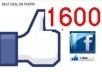 provide you 1600 real facebook LIKES with unique ips