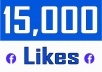 Add 15,000+ Facebook NON drop Followers