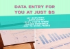 type your work within 24 hours and I can do data entry for you