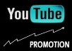 Do High Quality 2000+ YouTube Views