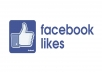provide 3000 facebook post likes