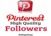 provide 100 pinterest followers