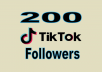 provide you high quality 200 TikTok followers