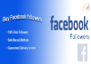 Provide you 1500 Facebook followers
