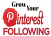 provide you 300+ Pinterest followers