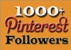 Provide 1000 Pinterest Followers