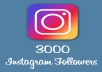 Give 3000 Instagram permanent Followers