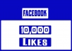 provide 10,000 facebook post likes