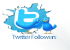 provide you 2300+ Twitter Followers