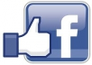 provide you 1800+ facebook Page Likes
