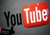 provide you 13000 youtube views