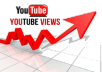 provide you 3000+ You tube views