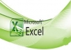 do any MS Excel work for you within a short possible time
