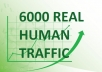 Drive 6000 Real Human Traffic To Website