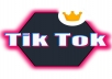 Provide you 450+ TikTok Followers