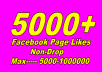 Give you real 5000 Facebook Fan Page Likes