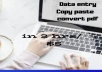 do data entry,  pdf to word/ excel, web research in single gig