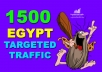 GET 1,500 HIGHT QUALITY WEB TRAFFIC TARGETED FROM EGYPT