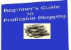 "give you an e-book file a ""BeginnersGuideToProfitableBlogging"""