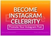 Do Instagram Post Promotion