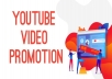 add 1000 YouTube organic video views