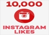Provide you 10,000 Instagram Photo/post/video Likes !!!