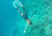 Sell HD Diving Videos For Your Travel Agency
