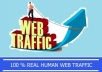 send 3,000 Real Human Traffic to your website for the 14 days