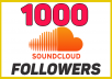 Provide 1000 Soundcloud Followers