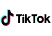 Promote Your Tiktok Profile, Gain You Followers