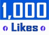 Add 1,000 Fan Page Likes (with 15 days auto Refill)
