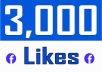 Add 3,000 Fan Page Likes (with 15 days auto Refill)