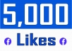 Add 5,000 Fan Page Likes (with 15 days auto Refill)