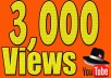 I will Provide 3000 YouTube Views  Service Features :  100% non drop life time guaranty 100% real ,100 % safe