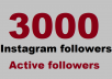 Add 3000 Active Instagram Followers