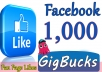 I will Give you 1,000 Facebook Likes on your Facebook page, If you need Non Drop so Just order now.