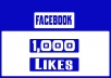 we provide 1,000 Facebook likes to increase your Fan Page rank.And also we deliver it within 48 hours.If you want more , you can contact us or check the Extra services.