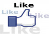 give 750+ Facebook likes on your fanpage and advertise your website to more than 100,000 twitter followers in 48 hours