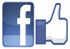 show you how to get HORDES of Real Facebook Likes for free
