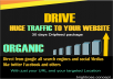 Send Huge Real Traffic To Your Website/ecommerce